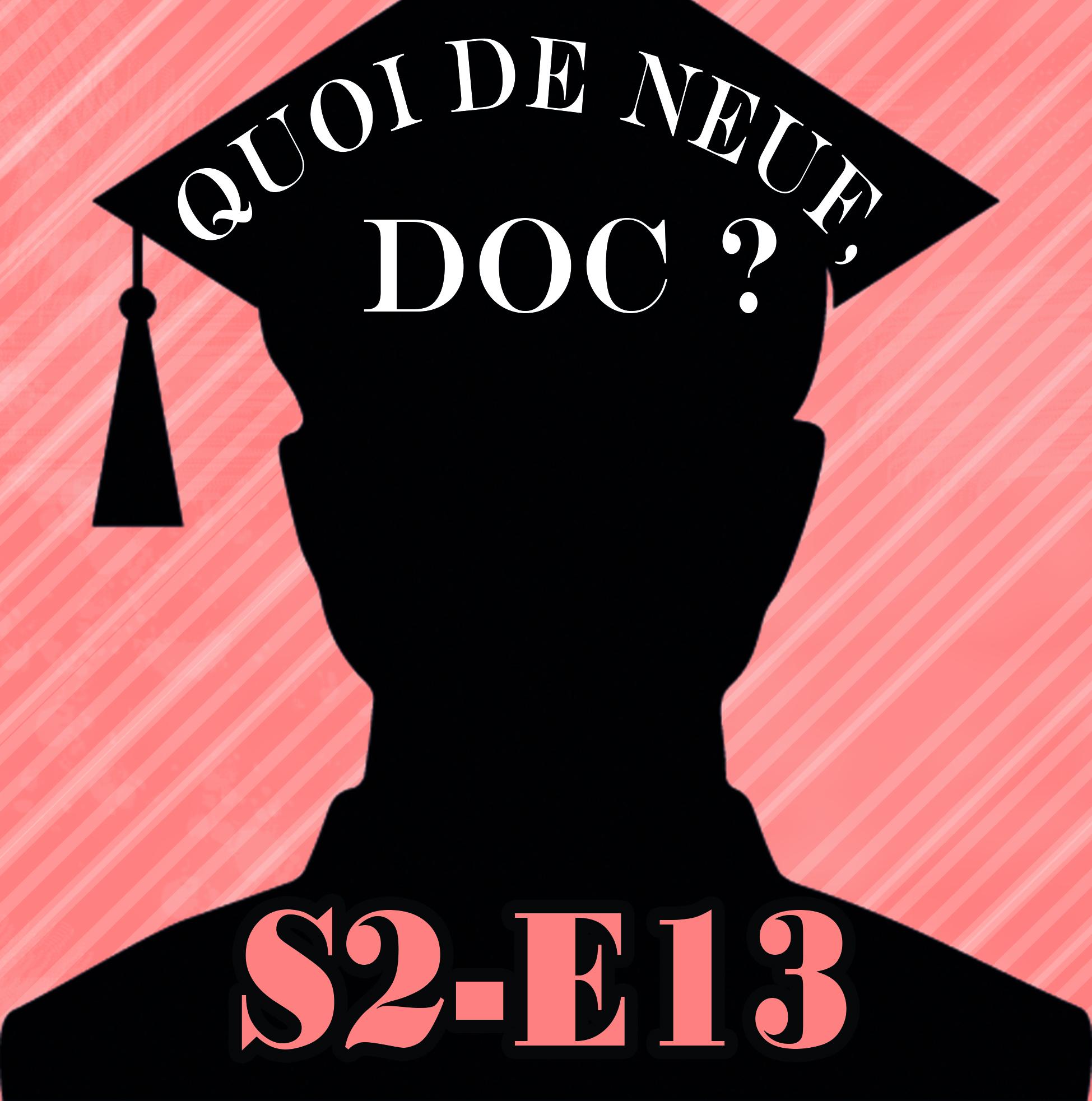 QDNDs2e13