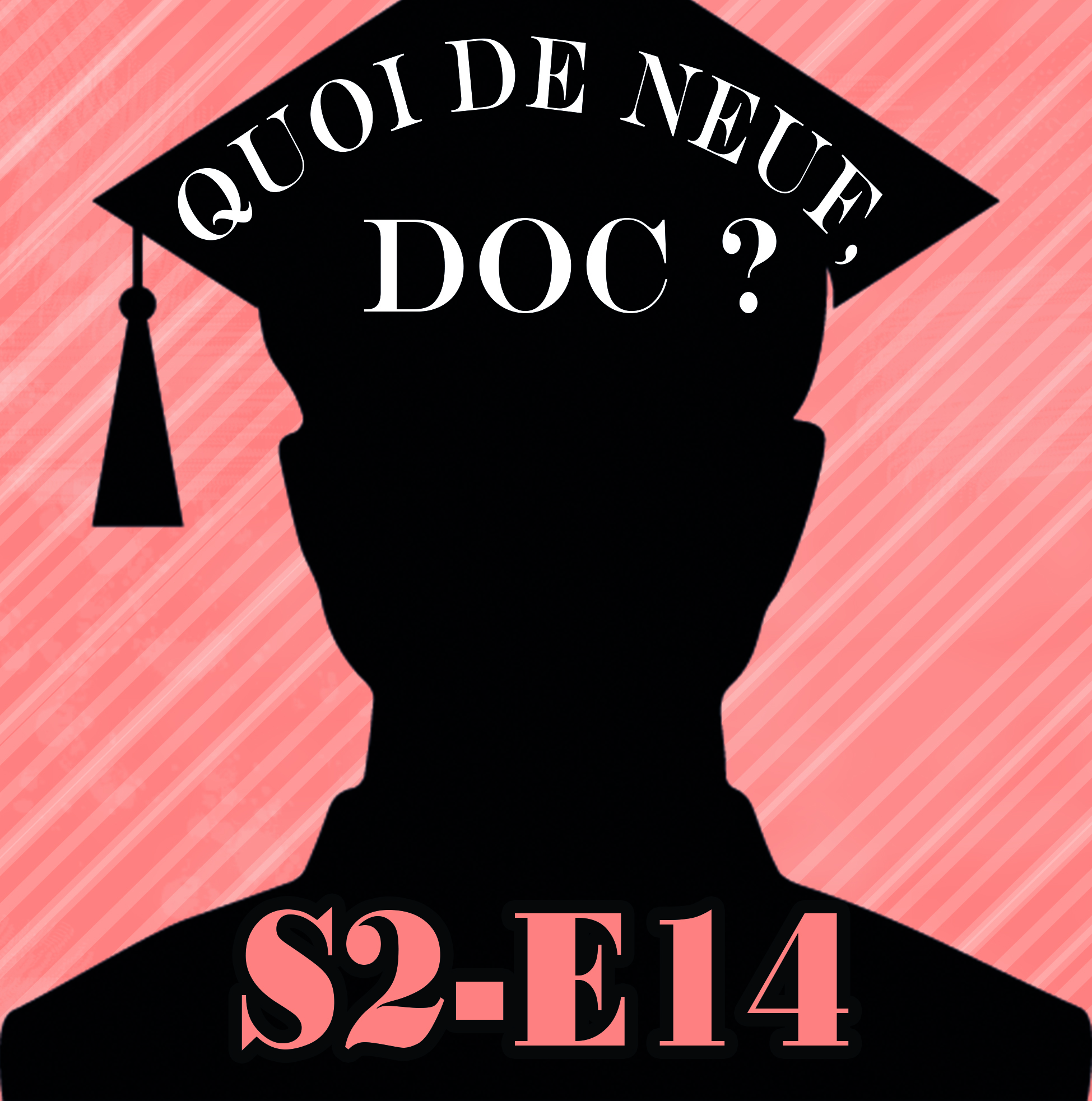 QDND S2E14 Emission du 6 avril