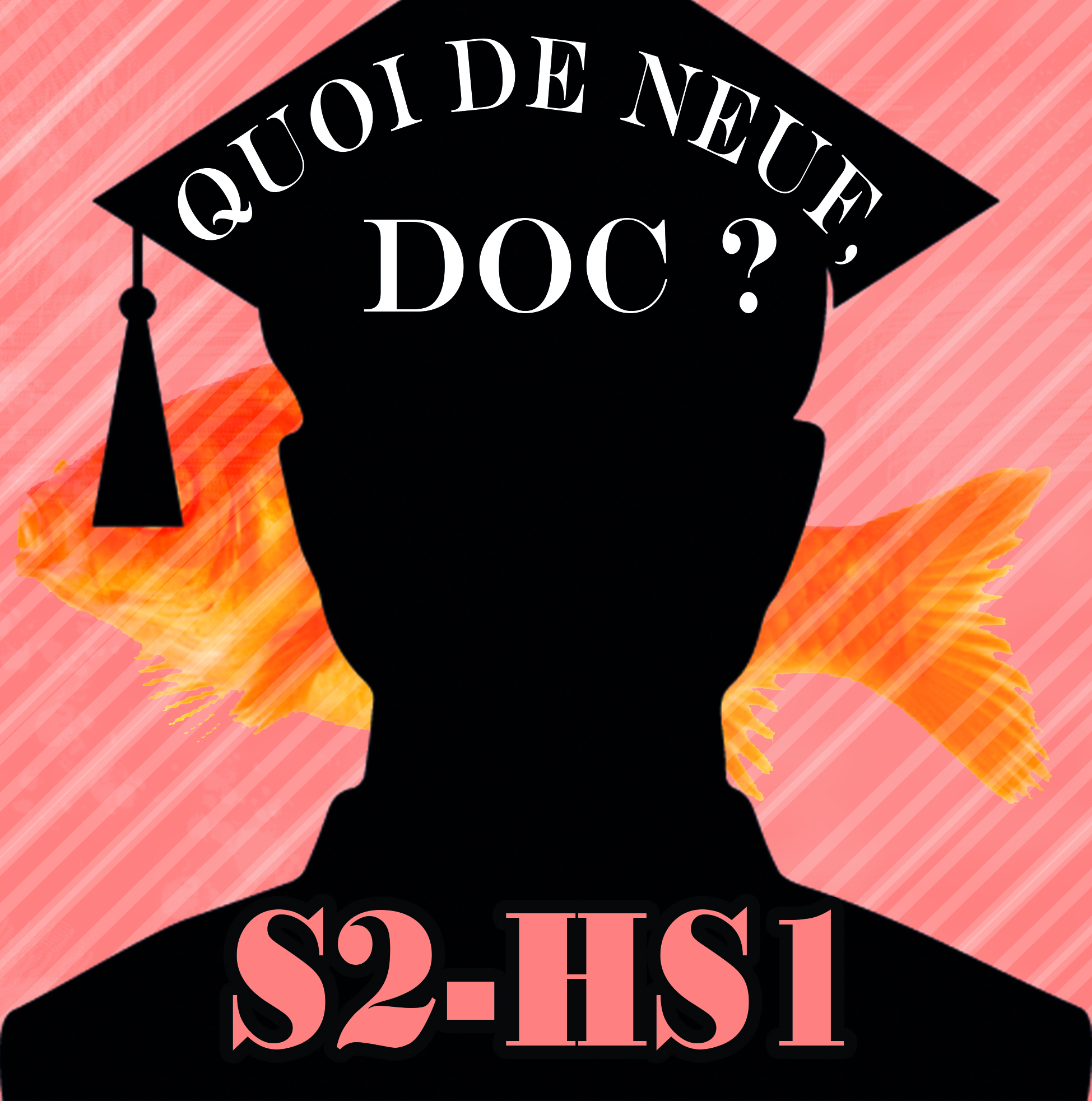 QDNDs2HS1