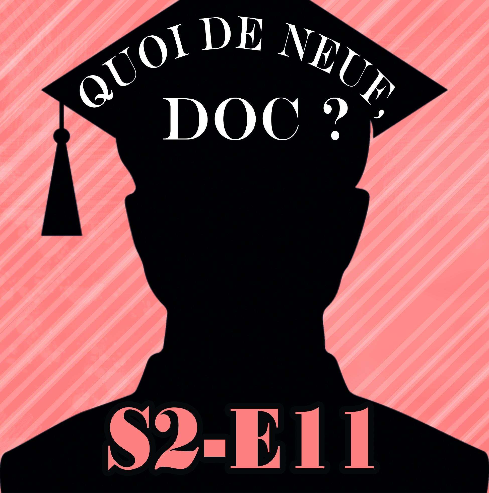 QDNDs2e11
